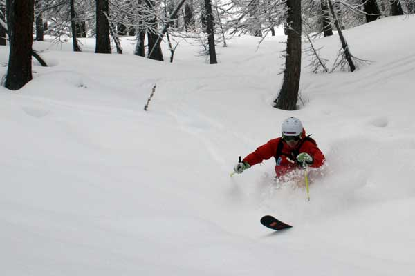 more val d'isere tree skiing image of